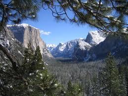 """Еден од најубавите национални паркови во светот """"Јосемит"""""""