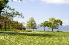 Утре доаѓа пролетта
