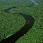 10-те најдолги реки на светот