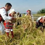 Некои состојби, можности и перспективи на земјоделството во Р. Македонија