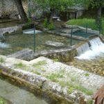 Викенд предлог: селото Вруток – изворот на Вардар и кралството на пастрмката