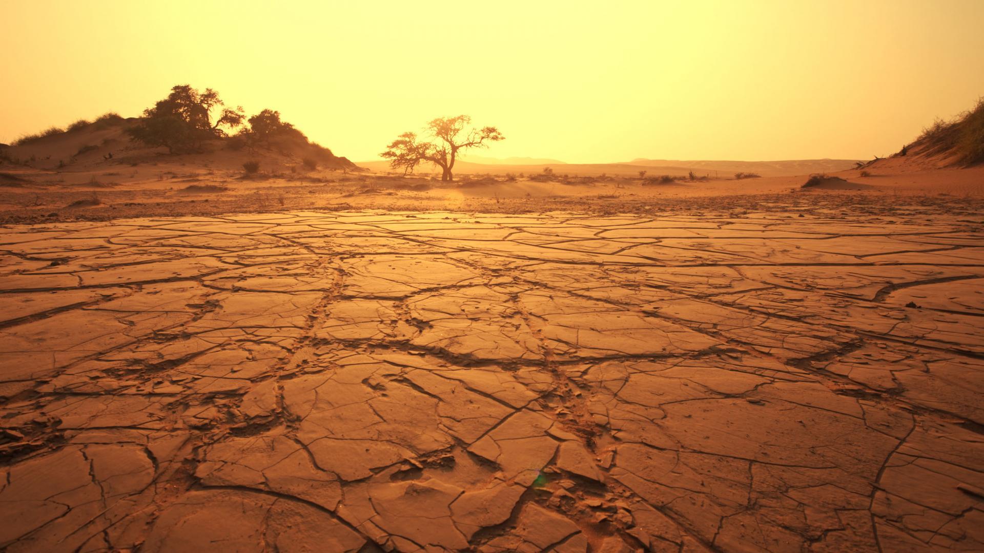 Десетте најголеми пустини во светот