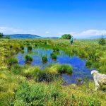 """Мистичните езерца """"Орлови очи"""" на врвот Ченгино Кале!"""