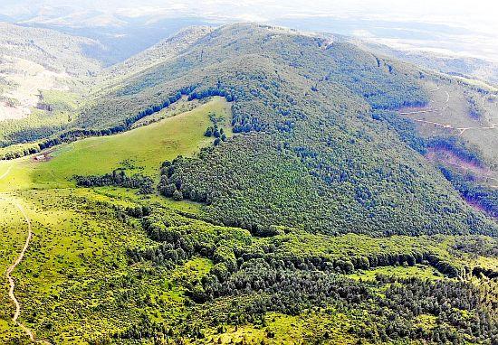 Пехчевски Буковик – стара вулканска купа со подзаскриена природна убавина!