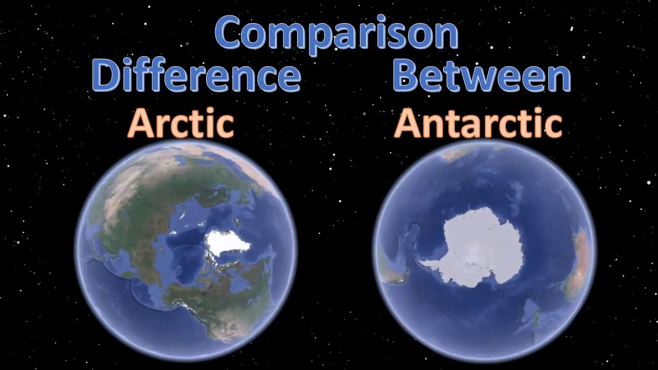 Поларните предели на Земјата – Арктик и Антарктик