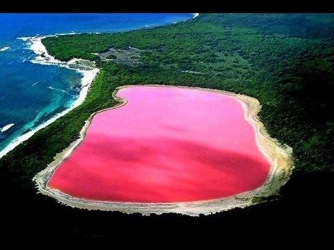 Хилиер – розевото езеро во Австралија