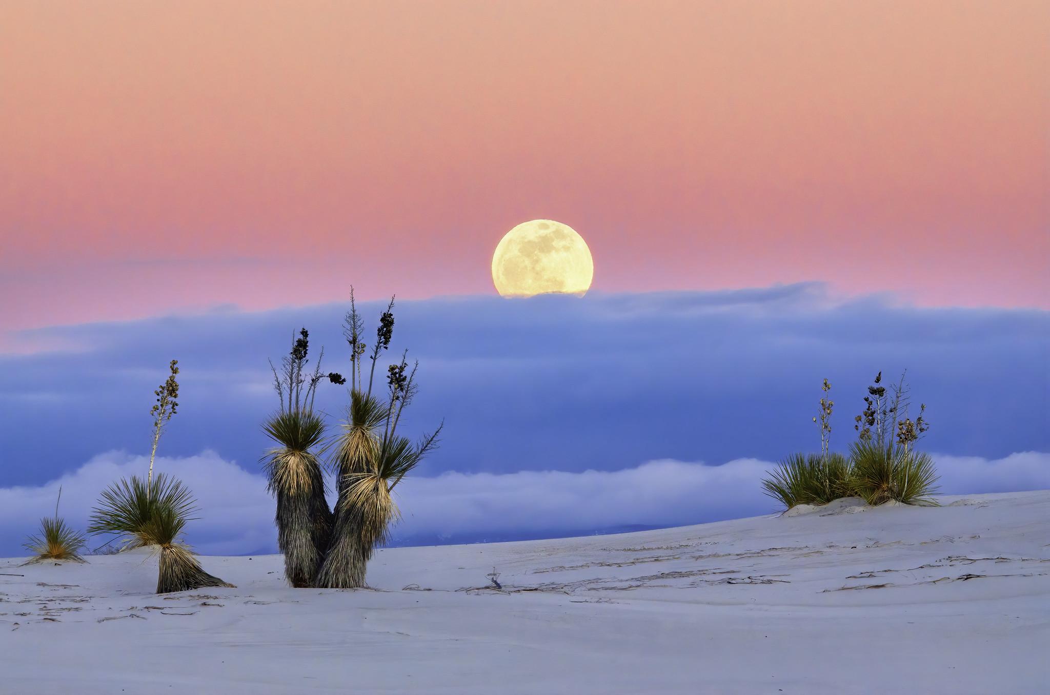 """Национален парк """"Бели песоци"""""""